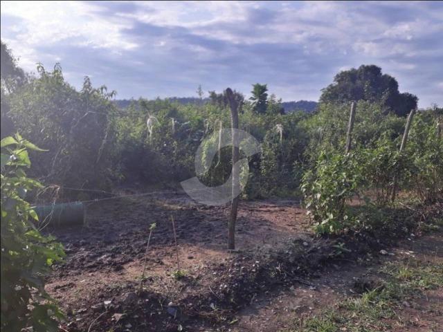 Terreno de 1.000 m² em Ubatiba - Maricá - Foto 6