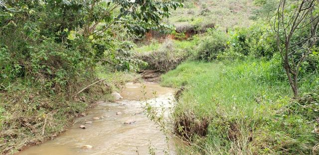 Fazenda 295 hectares próximo de Governador ValadaresMG - Foto 4