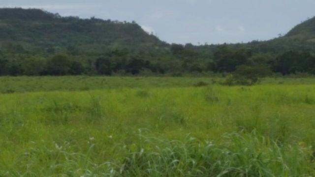 3.025 hectares em Araguaína/TO