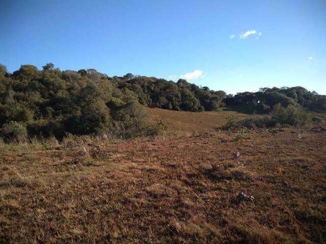 Belíssima área de campo para sitio de lazer com 30000 m² - Foto 7