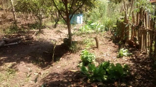 Venda - Chácara em Jacareí - 3000m2 - Foto 12