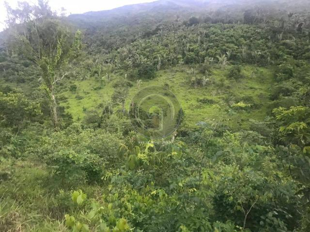 Sitio na região de santo antonio - Foto 11
