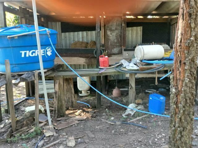 Vendo Sítio na Serra S. Vicente - Foto 2