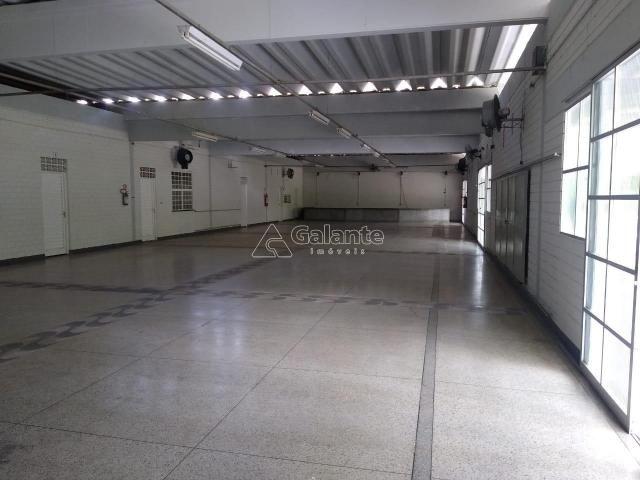Apartamento à venda com 3 dormitórios em Jardim pacaembu, Campinas cod:AP004838 - Foto 15