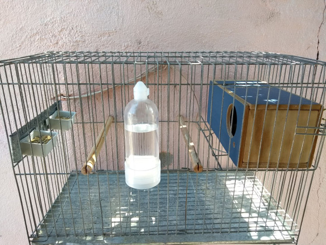 Gaiola de periquito médio com casinha! - Foto 2