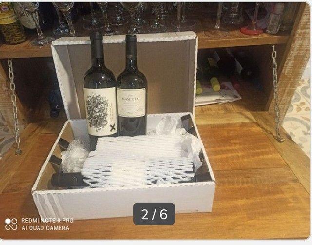 Kit Gran Reserva Mascota (últimas duas garrafas) + 1 garrafa Sapo de Otro Pozzo - Foto 3