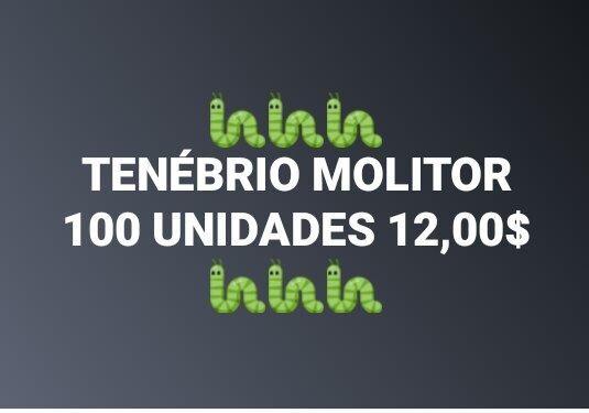 Tenebrio Molitor