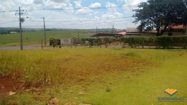 Terreno à venda em Alto das grevileas, Maringá cod:1110006021 - Foto 2