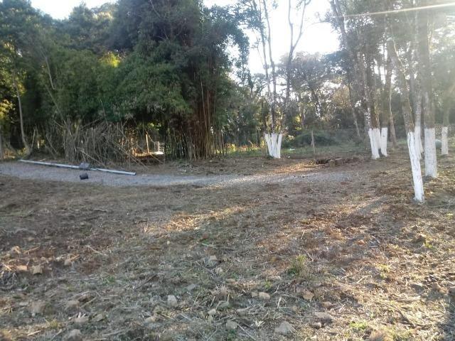 Excelente area para chacrinha com 4.675m² ( 85:00x 55:00 m) - Foto 2