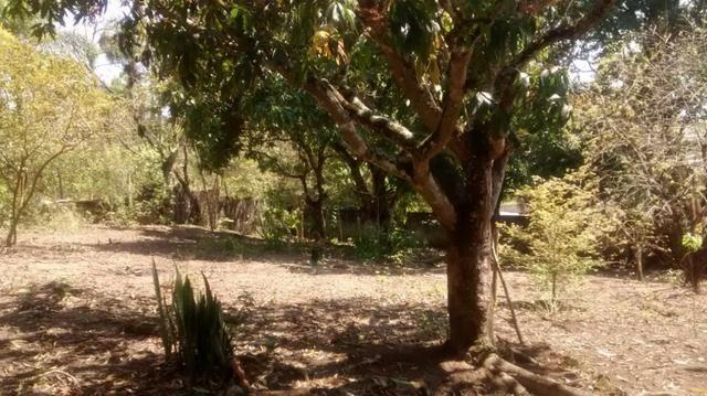 Venda - Chácara em Jacareí - 3000m2