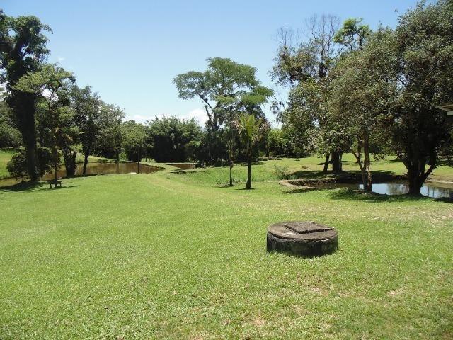 Excelente fazenda em Antonina 40 Alqueires - Foto 19