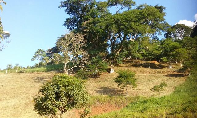 Montanhas de Minas!!! Espaço Mini Sitio Granja Terreno JF Monte Verde - Foto 5