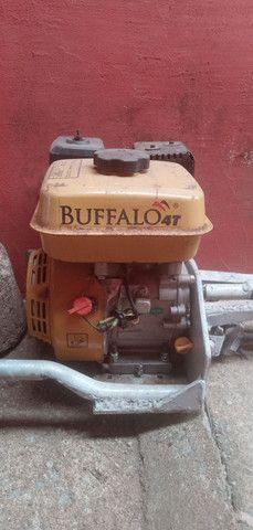 Motor Buffalo