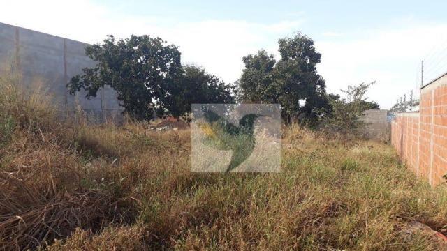 Terreno à venda, 1125 m² por r$ 355.000 - jardim belo horizonte - Foto 8