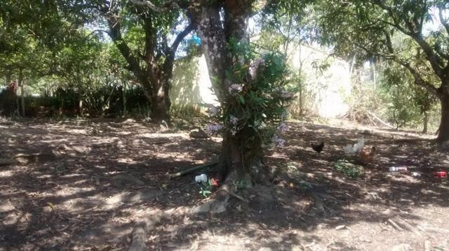 Venda - Chácara em Jacareí - 3000m2 - Foto 19
