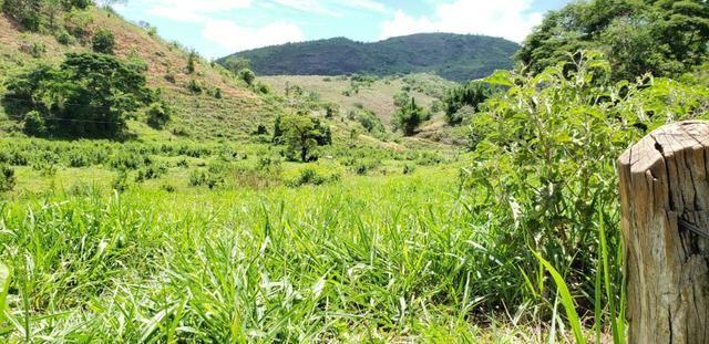 Fazenda 295 hectares próximo de Governador ValadaresMG - Foto 15