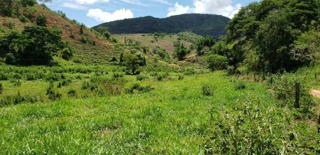 Fazenda 295 hectares próximo de Governador ValadaresMG - Foto 16