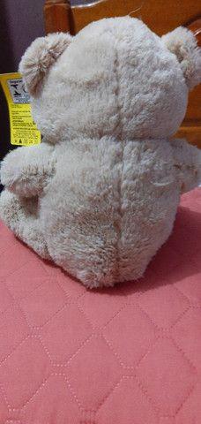 Ursos  - Foto 4