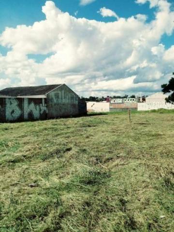 Atuba, Terreno de Esquina, Documentação Ok, Financia - Foto 2