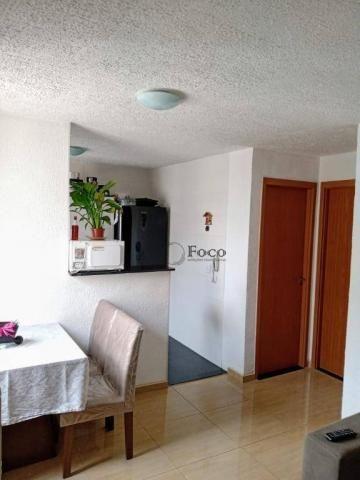 Apartamento com 2 dormitórios para alugar, 45 m² por R$ 650/mês - Água Chata - Guarulhos/S - Foto 5