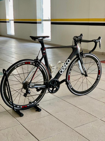 Bike Speed CEEPO Stinger Carbon L54