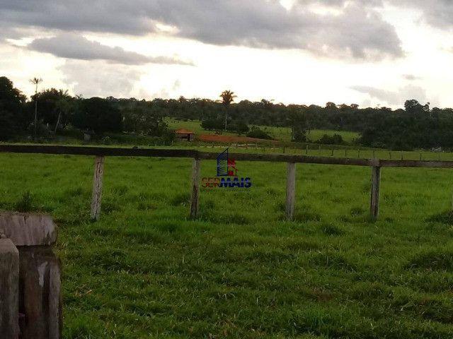 Fazenda, 335 alqueires paulista, à venda por R$ 7.370.000 Zona Rural - Nova Mamoré/RO - Foto 5