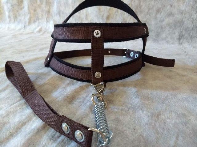 Peitoral coleira para cachorro +guia com mola anti- puxão na cor marrom