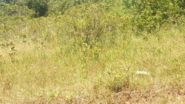 Terreno em Iguaba Grande - Foto 3