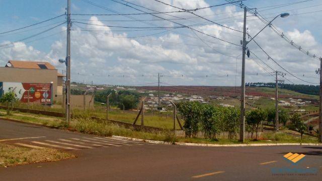 Terreno à venda em Alto das grevileas, Maringá cod:1110006021 - Foto 10