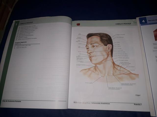 Dois Atlas de Anatomia Humana do Netter - volumes 1 e 2 - Foto 2