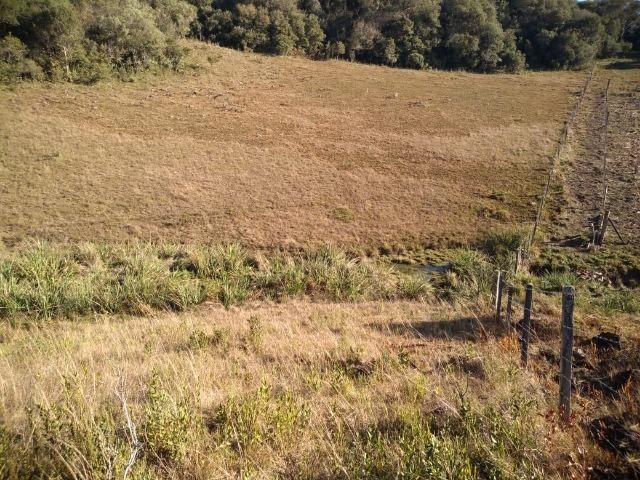 Belíssima área de campo para sitio de lazer com 30000 m² - Foto 6