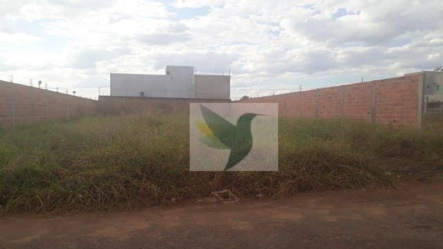 Terreno à venda, 450 m² por r$ 105.000 - setor residencial granville i - Foto 3