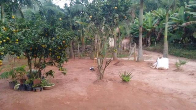 Casa rural em Todos os Santos Marechal Floriano - Foto 7