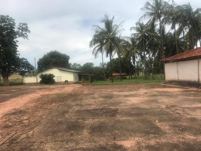 Vende-se Fazenda na Cidade de Dirce Reis-SP - Foto 11