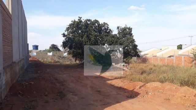 Terreno à venda, 1125 m² por r$ 355.000 - jardim belo horizonte - Foto 3