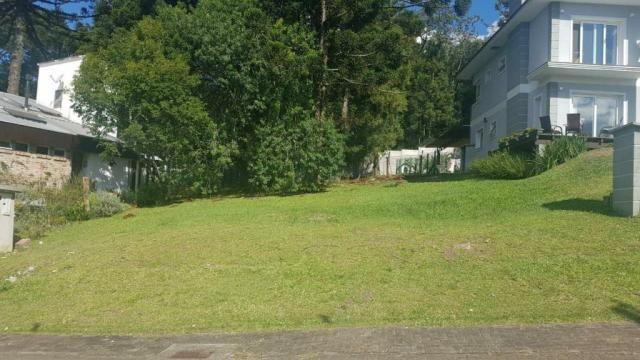 Terreno à venda em São josé, Canela cod:NI05492 - Foto 3