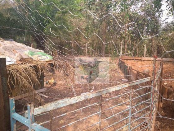 Chácara com 2 dormitórios à venda, 13200 m² por r$ 250.000 - jardim rivera - Foto 9