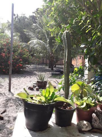 Casa de praia - sítio do conde -Bahia - litoral norte - Foto 6