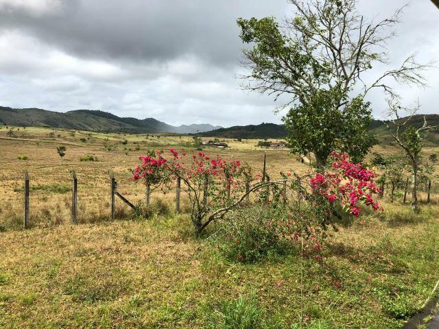 Fazenda Floresta Azul - Foto 5