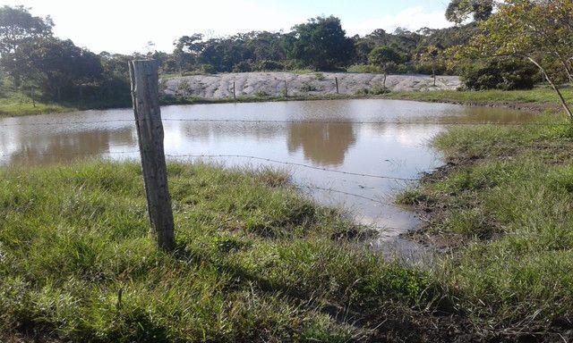 faz com 200 hectares na Bahia 280.000 - Foto 4