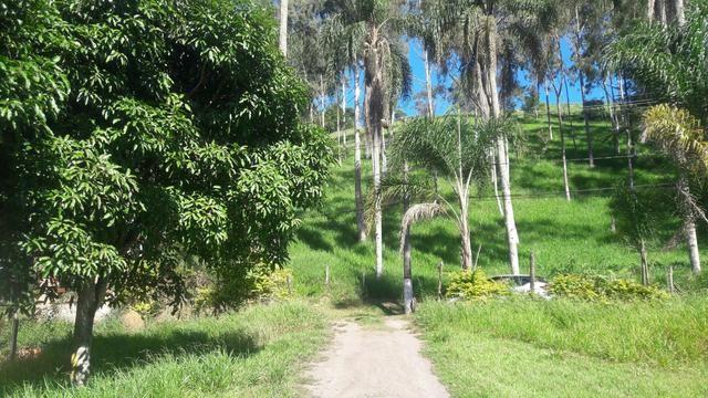 FAZENDINHAS DO BELO VALE - Granja Plana (Kátia Corretora)