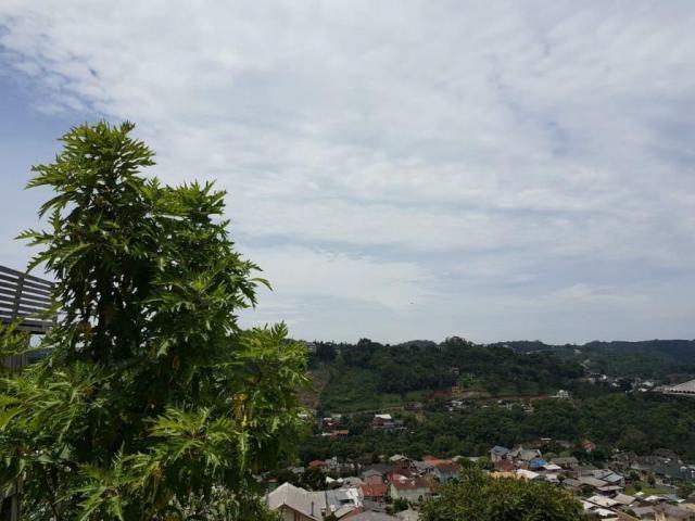 Terreno - bairro floresta - Foto 4