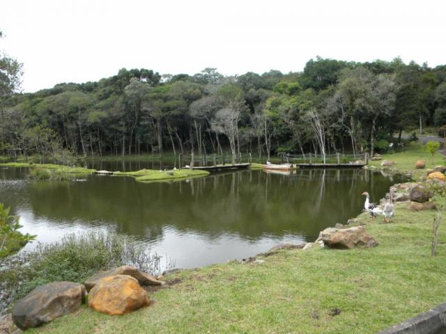 Terreno - Bairro Lagos de Gramado - Foto 6