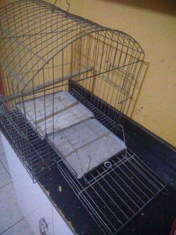 Gaiola para papagaio   nova pouco usando  - Foto 3