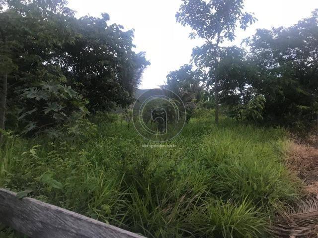 Sitio na região de santo antonio - Foto 12