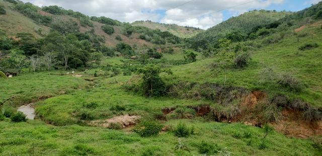 Fazenda 295 hectares próximo de Governador ValadaresMG - Foto 2