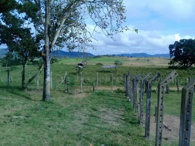Fazenda Floresta Azul - Foto 3