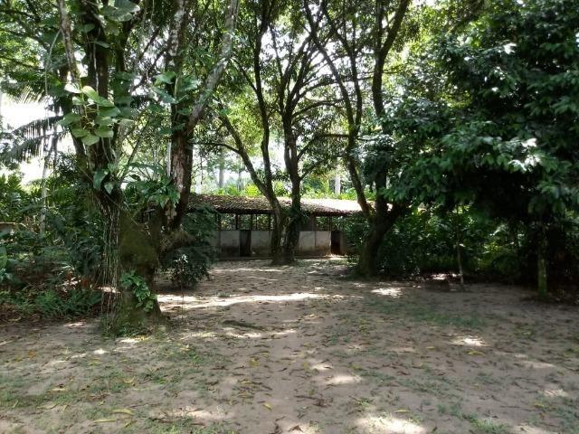 Vende-se Belissima Chácara em Benevides 40.000m - Foto 20