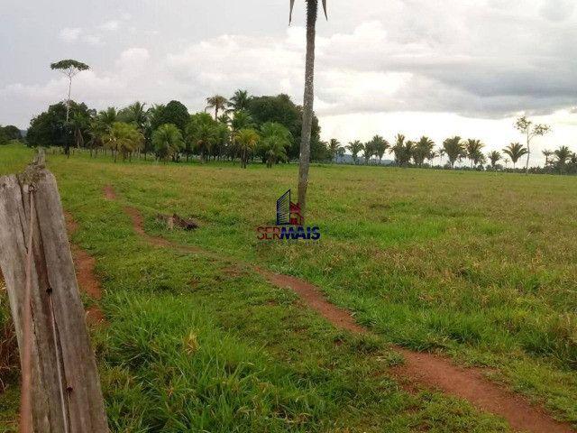 Fazenda, 335 alqueires paulista, à venda por R$ 7.370.000 Zona Rural - Nova Mamoré/RO - Foto 6