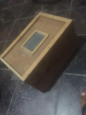 Caixa de Tenébrio molidor - Foto 4
